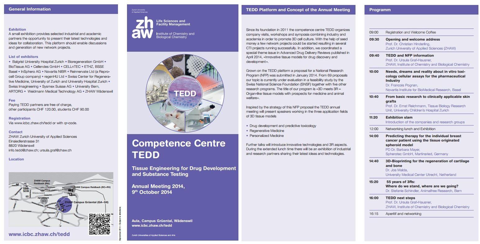 TEDD Meeting